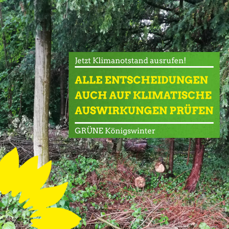 BÜNDNIS 90/DIE GRÜNEN unterstützen Bürgerantrag zum Klimanotstand